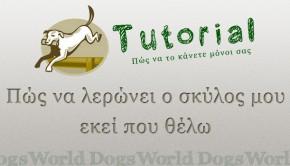 Πως να λερώνει έξω ο σκύλος tutorial